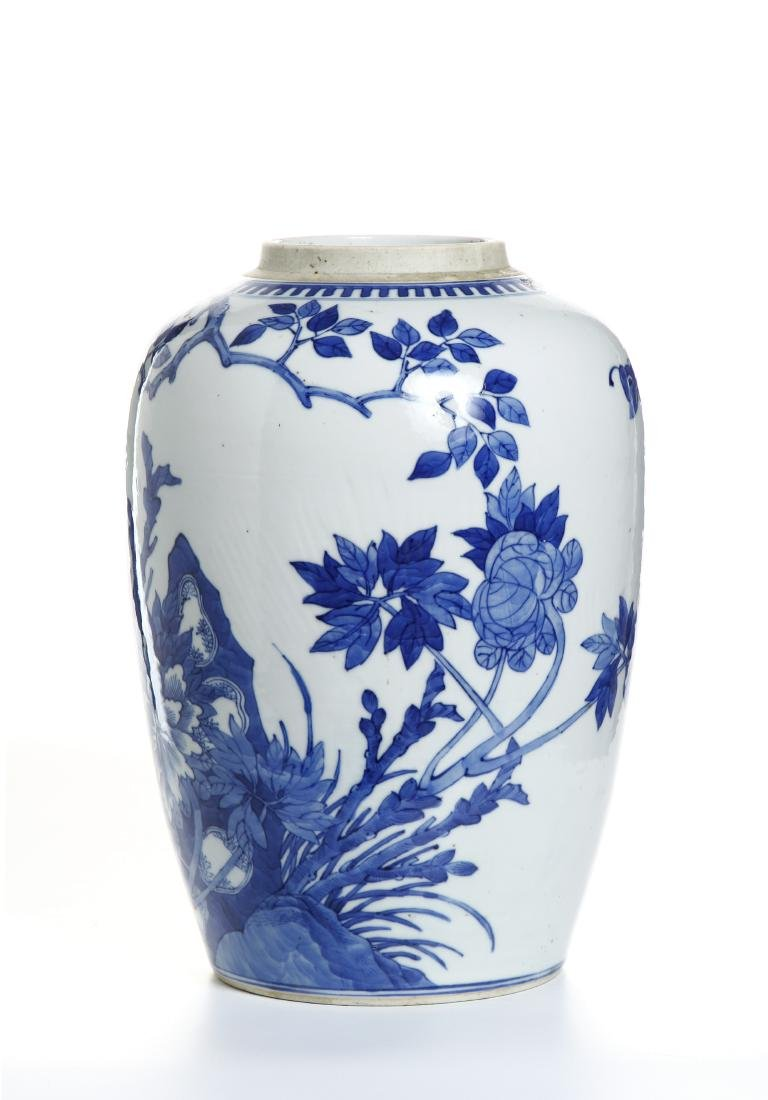Chinese Blue and White Ovoid Vase - 2