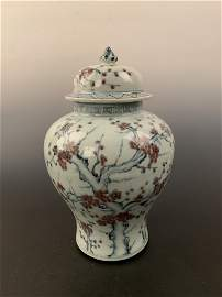 Chinese Qing Blue and Copper Red Jar
