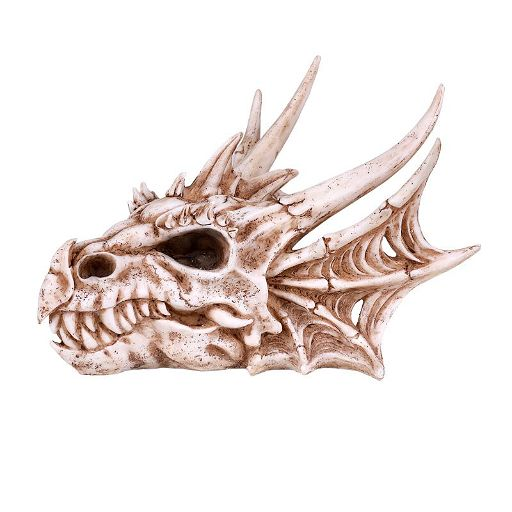 Dragon Skull Head Sep 04 2019 1st Asset Collections In Ca I have to do a dragon body paint next month and i wanted a nice interesting headpiece. dragon skull head