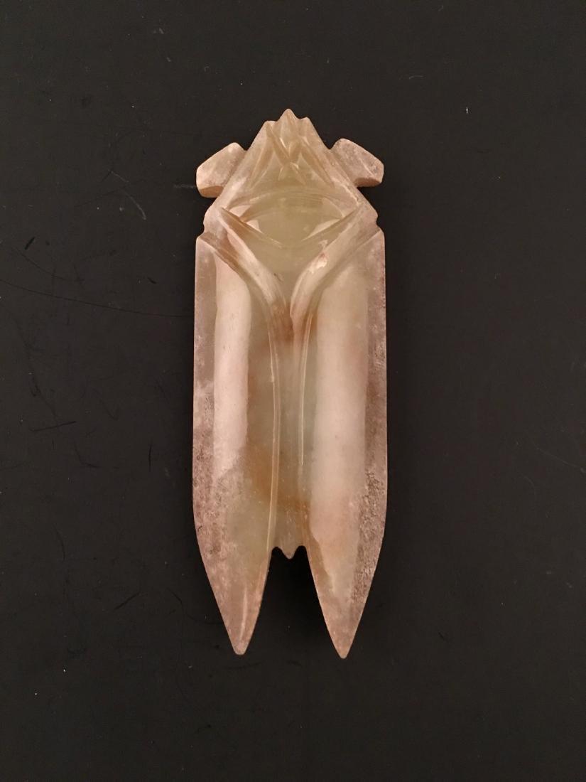Chinese Jade Cicada - 5