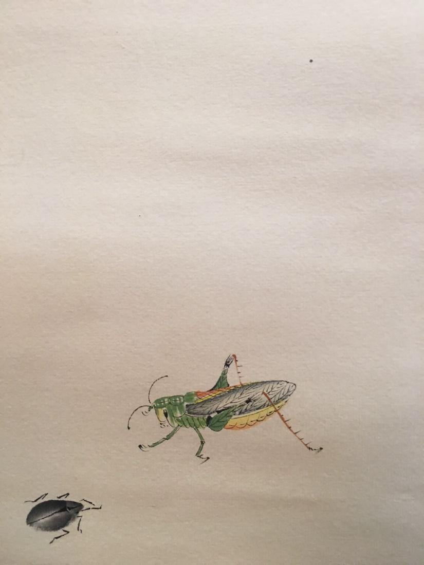 Chinese Hanging Scroll Of Grass And Insect - 9