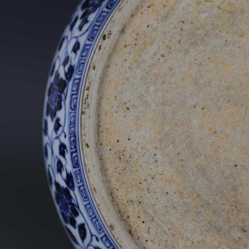 Ming Dynasty blue and white tangled lotus disk - 6