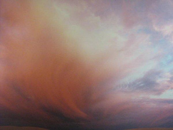 8: Lori Labatt  Canadian Art  Saskatchewan  Book  Natur