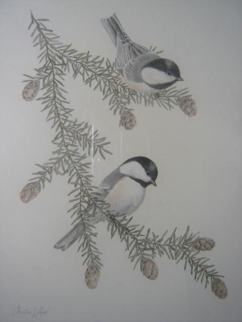 13: Christine Wilson  Canadian Art  Nature  Birds