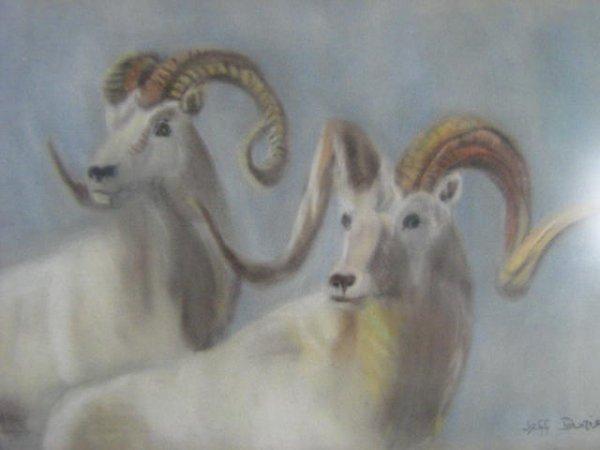 14: Jeff Downie  Canadian Art  Nature  Animals