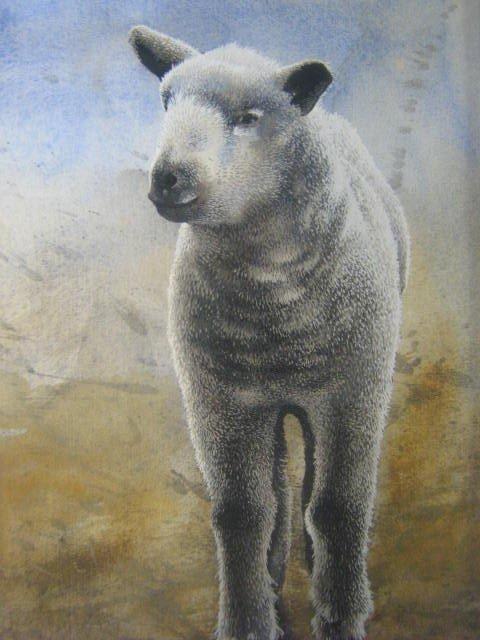 15: Ken Tolmie  Canadian Art  Halifax  Animals