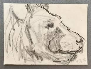 Freya DeNitto, 'Lion'