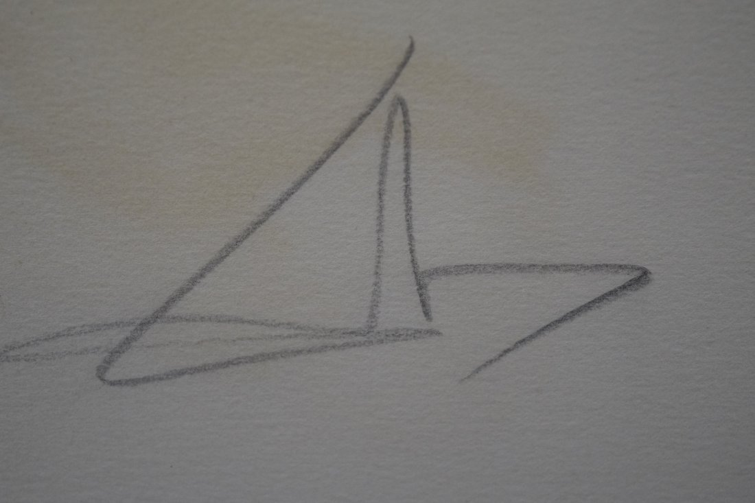 Salvador Dali, Lithograph (Pencil Signed & Numbered) - 3