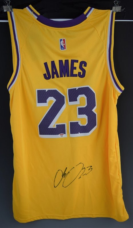 hot sale online e105e 6d7b1 Lebron James Signed Los Angeles Lakers Jersey