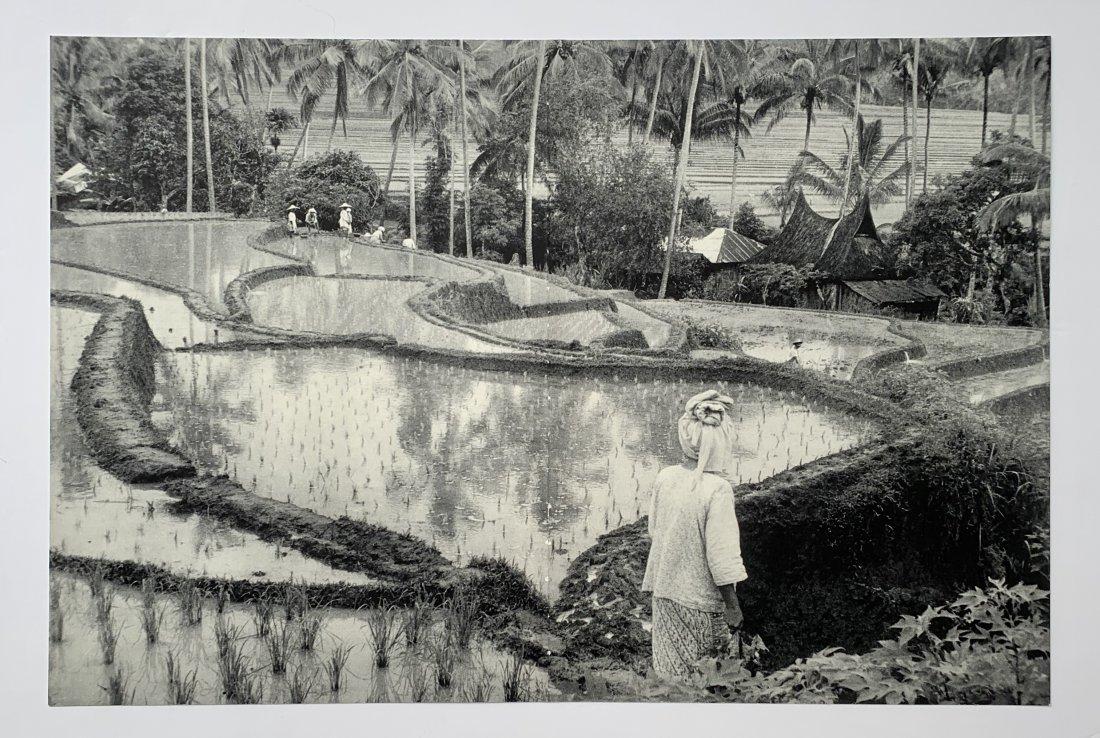 Henri Cartier-Bresson - A Scene from Bali, c. 1950