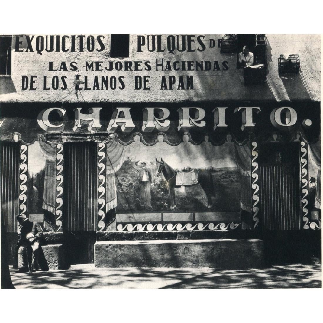 Edward Weston - Charrito, 1926