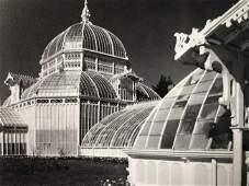 Ansel Adams - Conservatory, California 1962