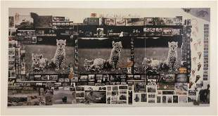 Peter Beard - Orphan Cheetah Triptych Print in Color