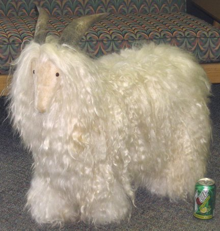 12: Faux Angora Goat Mount for Display Real Wool/Horn