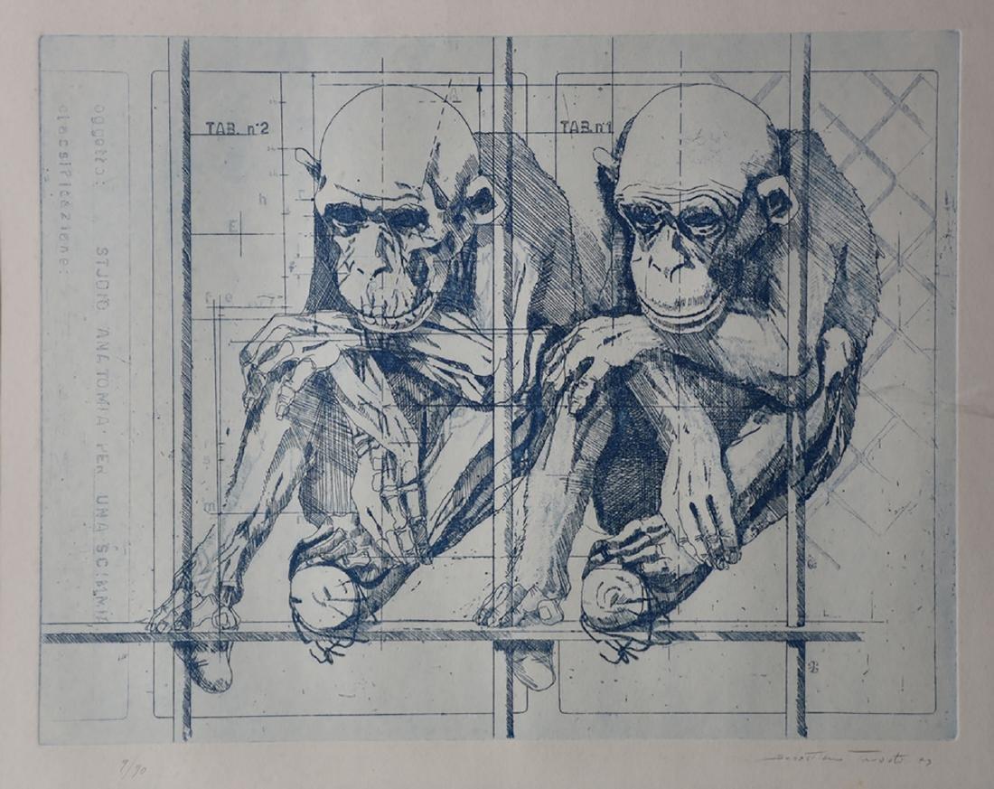 Sebastiano Trovato, Studio Anatomia per una Scimmia