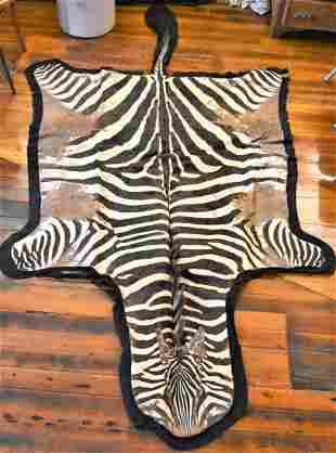 Full Body Zebra Skin Rug Mount