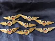 Delta Airlines 1980's Jr. Pilots Wings (8)