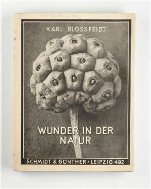 KARL BLOSSFELDT (1865–1932) *