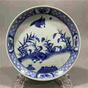 Qing Kangxi blue & white flower bird porcelain plate