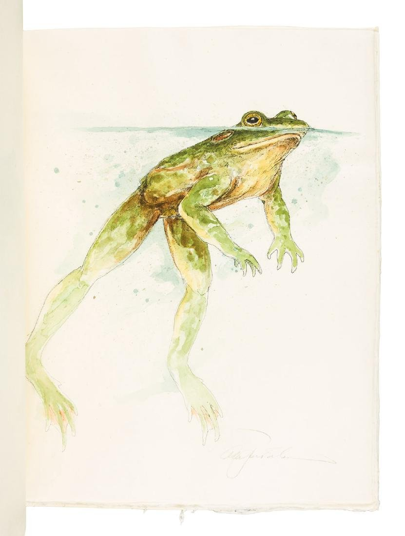 Frogs: 19 unique watercolors by  Alan James Robinson