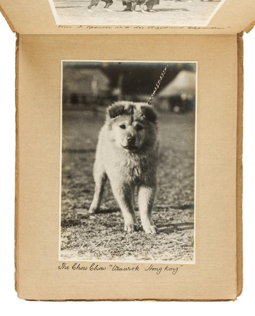 Patiala Championship Dog Show 1925