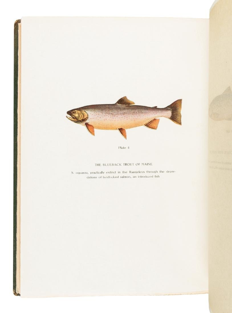 Ancestors of the Brook Trout, 1/300 copies - 5