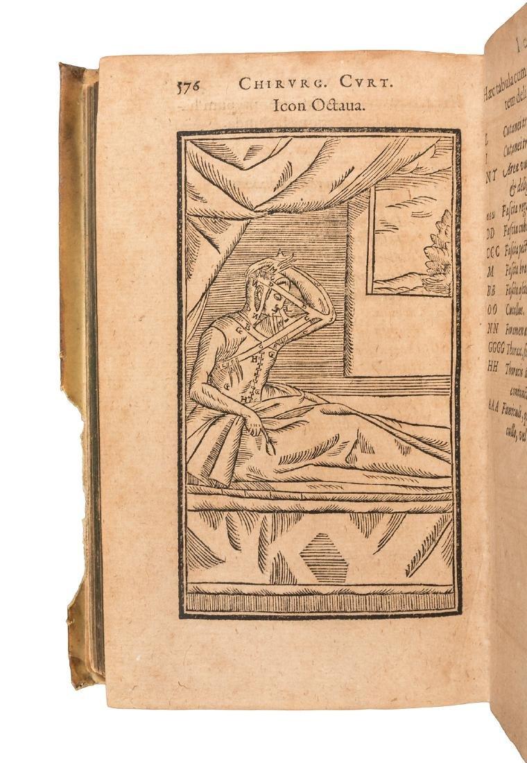 First work on rhinoplasty 1598 - 6