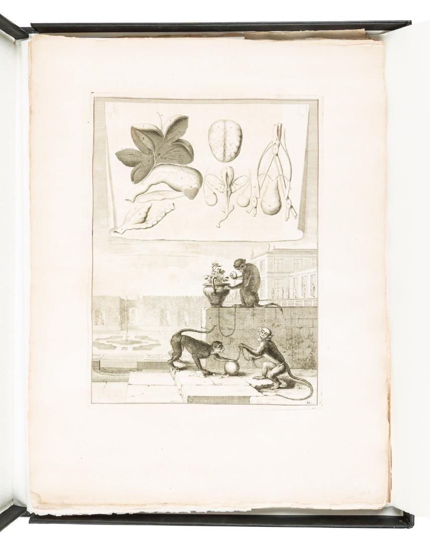 Engravings of animals & internal anatomy, 1676