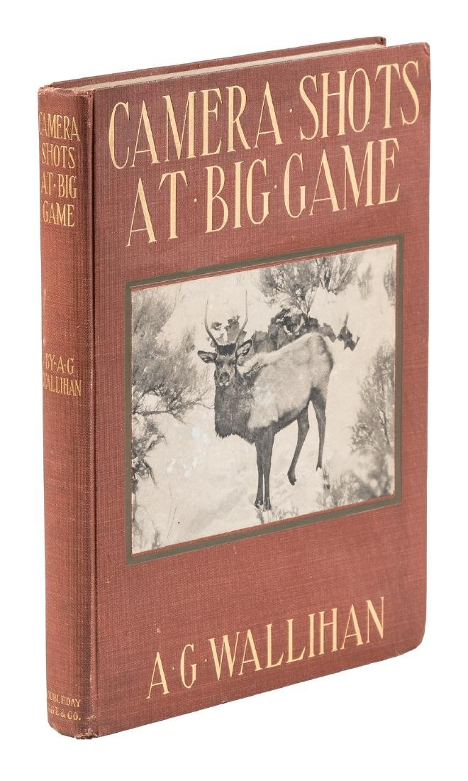 Camera Shots at Big Game Intro by Teddy Roosevelt