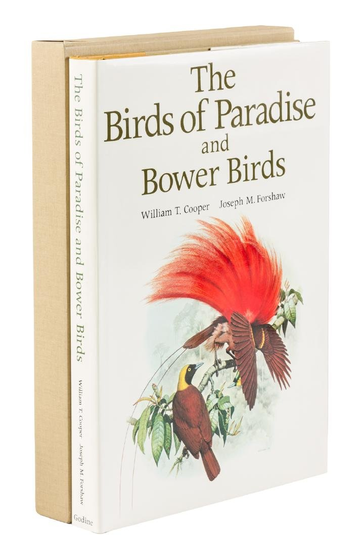 Birds of Paradise and Bower Birds