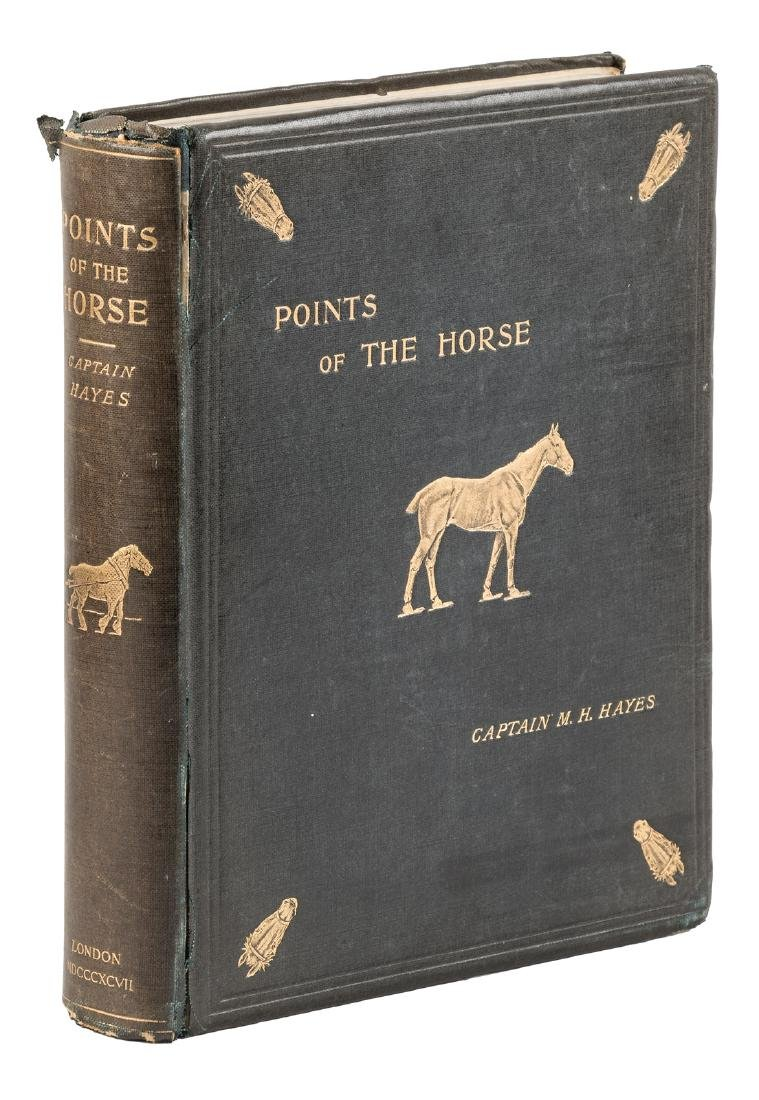 M.H. Hayes on Points of the Horse