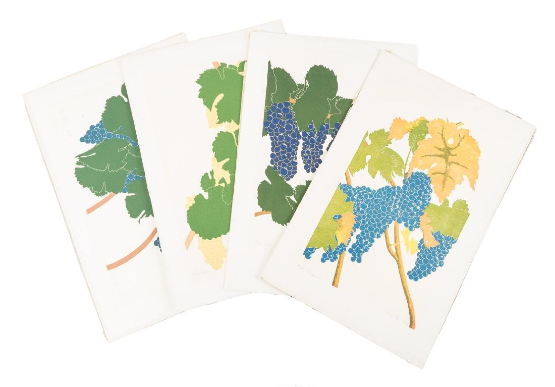 Henry Evans prints of wine grapes - 3