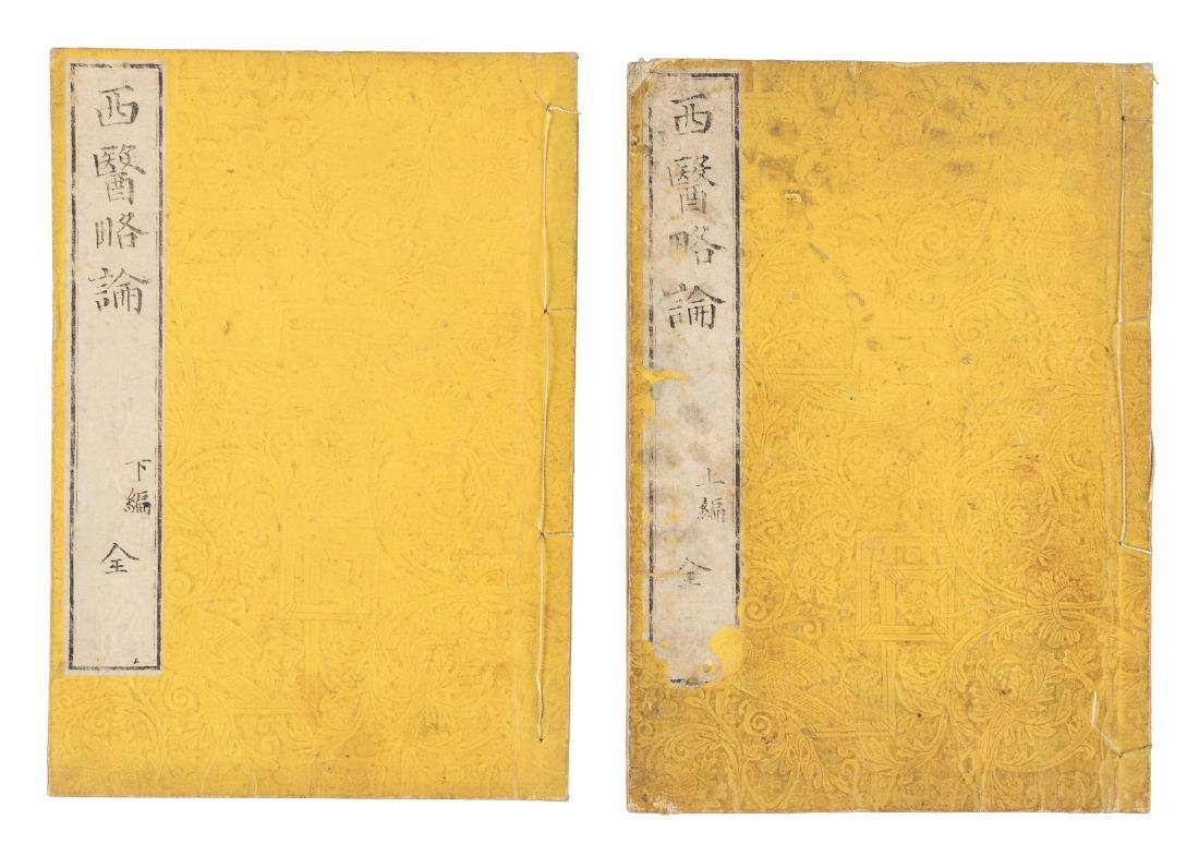 Chinese medical text by missionary 1857 - 3