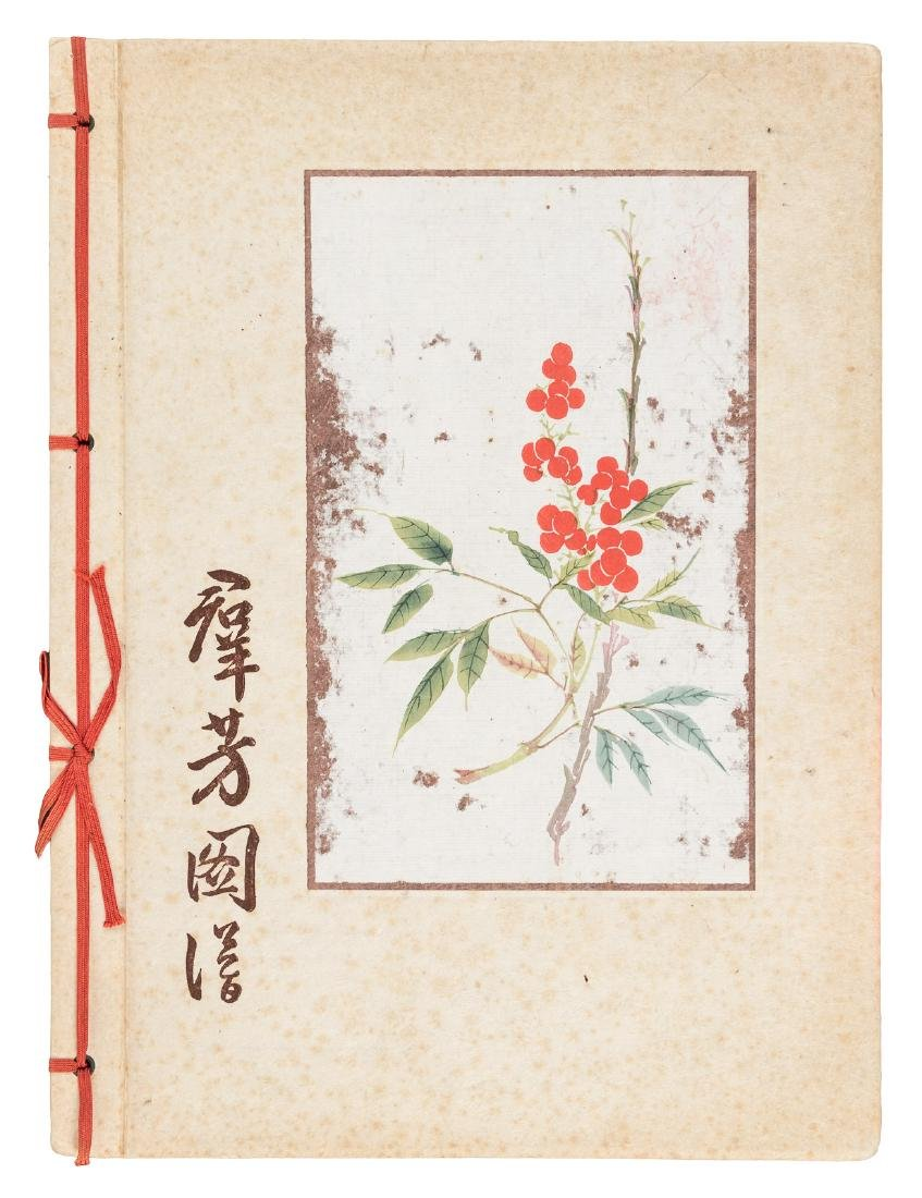 Watercolors of 18 Revered Chinese Plants and Trees