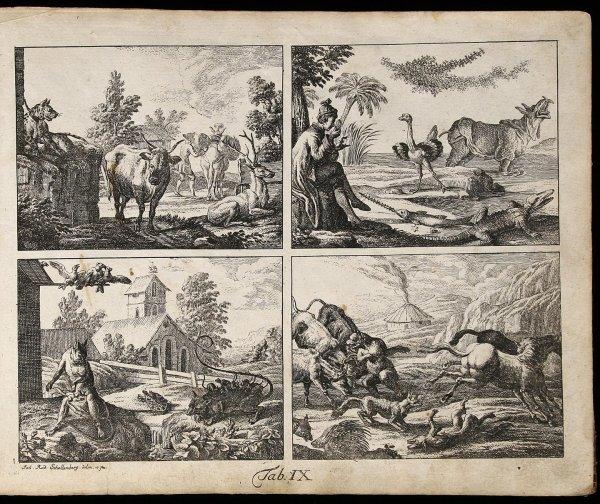 1007: Atlas volume for Basedow's Elementarwerke 1774