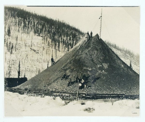 2007: L.E. Robertson Alaska Gold Rush Photo 1905