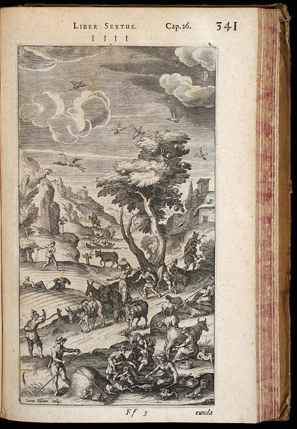 1102: Rare 17th Century work on Cryptography - 2