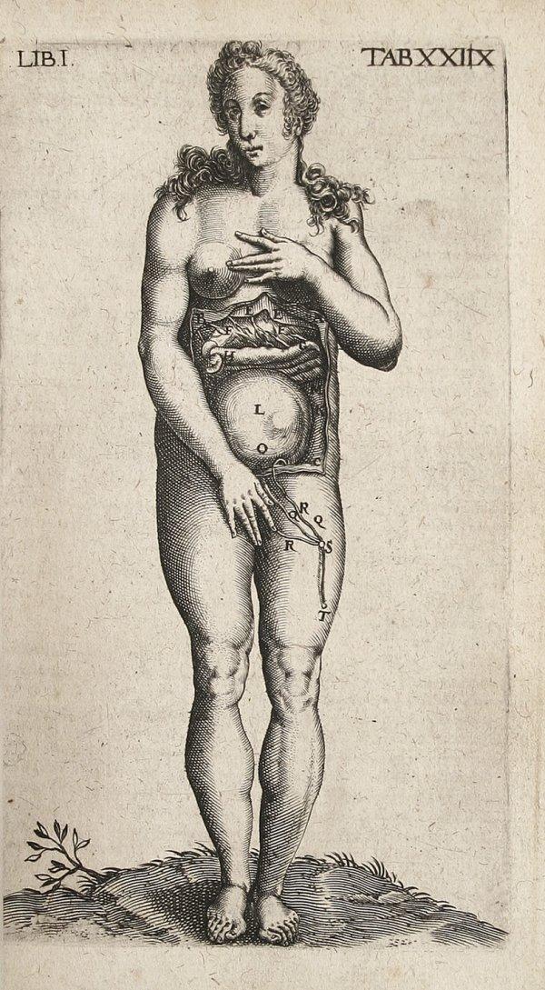 15: Caspar Bauhin Theaturm Anatomicum 1605