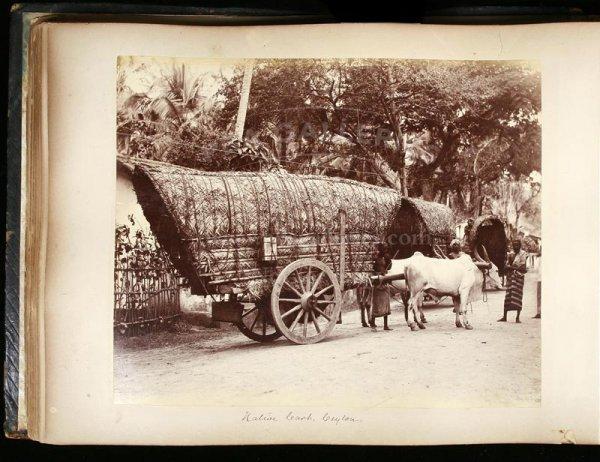 2114: 19th century photograph album of India & Ceylon - 10