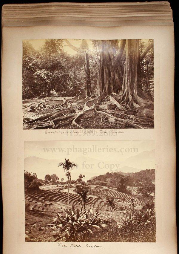 2114: 19th century photograph album of India & Ceylon - 6