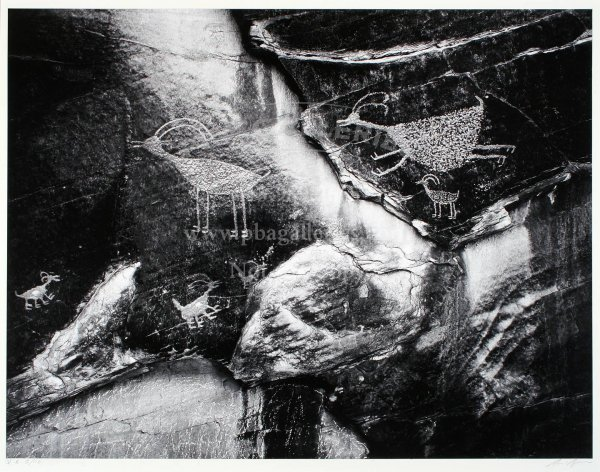 2: Ansel Adams gelatin silver print Petroglyphs, Sgd