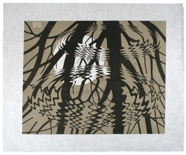 2039: M.C. Escher Linocut Rippled Surface