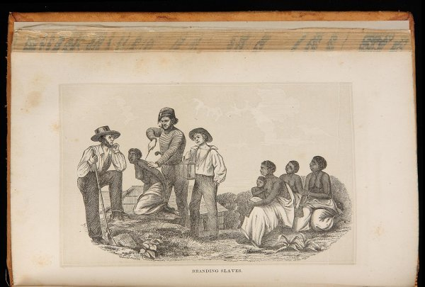 1012: The History of Slavery and the Slave Trade
