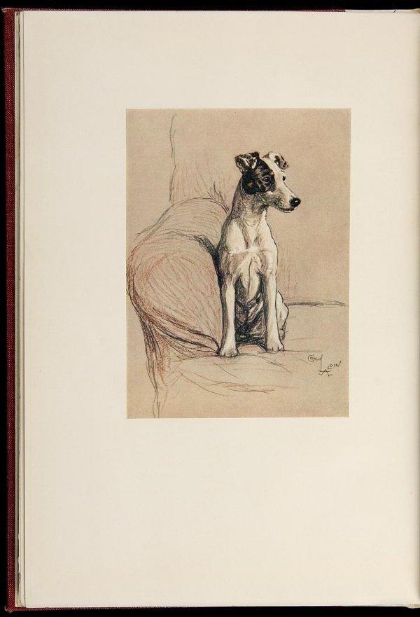 4003: Cecil Aldin A Dozen Dogs or So Signed Limited Edn