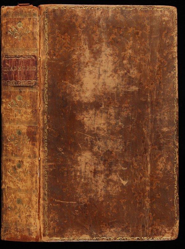 4012: Bewick's Quadrupeds 1790 Edition