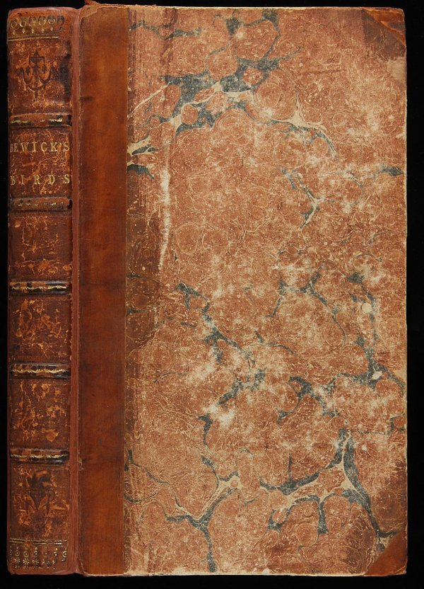 4013: Bewick's History of British Birds (Vol 1 only)