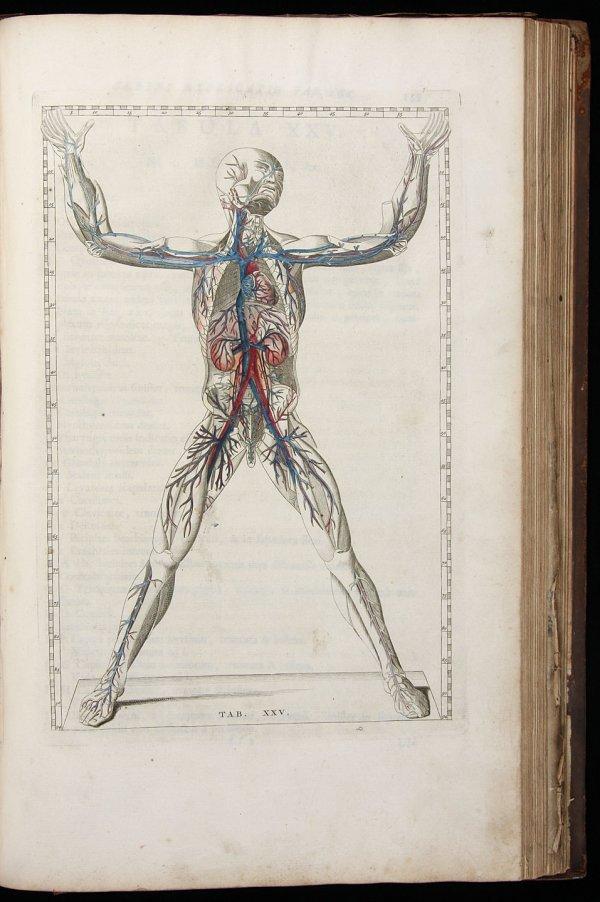 2005: Explicatio Tabularum Anatomicarum 1761