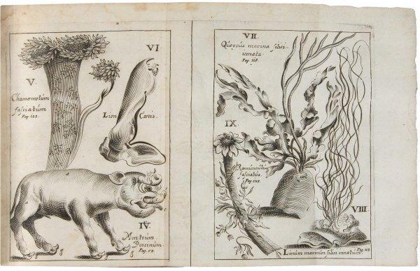 2014: Bartholin's Acta Medica, 1673-1680