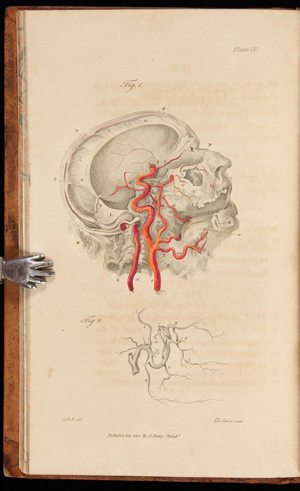 2019: Bell's Engravings of the Arteries 1816