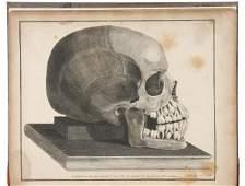 4803: The Natural History of the Human Teeth 1803